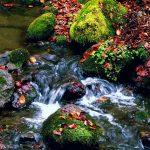 primeri-reke-slapovi-6